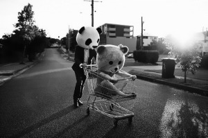 panda-in-a-trolley